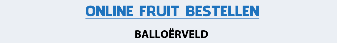 fruit-bezorgen-balloerveld