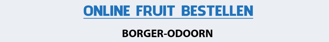 fruit-bezorgen-borger-odoorn