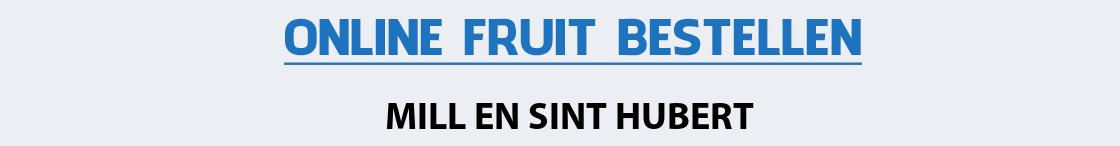 fruit-bezorgen-mill-en-sint-hubert