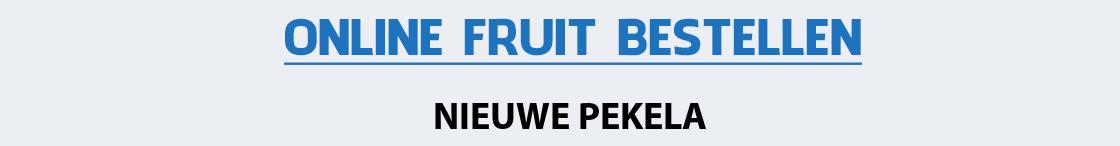 fruit-bezorgen-nieuwe-pekela